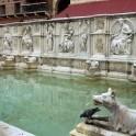 der Brunnen Fonte Gaia an der Piazza del Campo