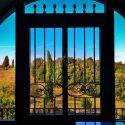 Weingut Santa Cristina, Aussenansicht