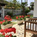 Die hintere überdachte Terrasse mit Essplatz