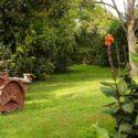 Bio Agriturismo Il Duchesco, Garten