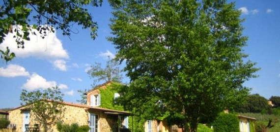 Weingut mit Ferienwohnungen in Foiano della Chiana
