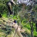 die Familie bei der Olivenernte