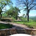 weitläufiger Garten mit Terrasse