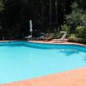 der Pool mit teilweise schattigem Liegebereich