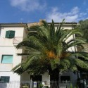 Castiglione della Pescaia - Apartment Mazzini