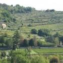sanfte grüne Hügellandschaft des Montalbano