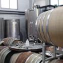 hauseigene Herstellung hervorragender Bio-Weine im Bio-Agriturismo Maremma