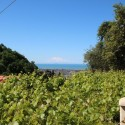 Versilia Ferienhaus Fabrizia - Panoramablick bis zum Meer