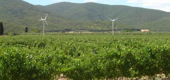 Energiegewinnung mit Windkraft im zertifizierten Bio Agriturimso Maremma