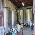 Die hauseigene Weinkellerei