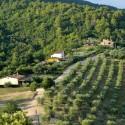 Forte Sorgnano - grüne Oase