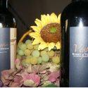 Die hervorragenden Weine des Weingutes Il Salicone
