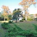 Ferienhaus Versiliana - der Garten