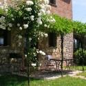 private Terrasse der Ferienwohnung Volte