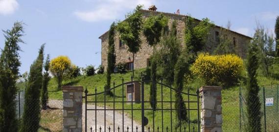 die private Auffahrt zum Anwesen Podere Collolungo