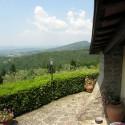 Toskana Ferienhaus Le Vignacce in der Region Mugello