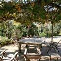 Ferienhaus Nicolino - der umrankte Patio als schattige Relaxzone
