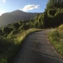 Die Auffahrt zum Ferienhaus Villa Azzurra