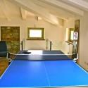 Salon mit Tischtennisplatte