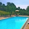 der private Swimmingpool mit Liegebereich