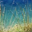 Frühling in der Toskana