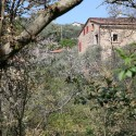 Toscana Rustico Versilia in ruhiger Lage