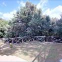 Ferienwohnung Scoglio - der private rückwärtige Garten
