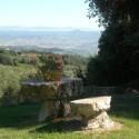 Die grünen Hügel des Chianti