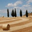 Die Toskana - Naturlandschaft wie ein Gemälde