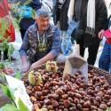 Herrlich aromatische Früchte des Herbstes