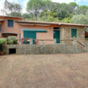 Sommerhaus Castiglione della Pescaia, Garten